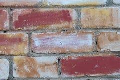 Målad tegelstenvägg Arkivfoto