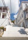 Målad vit kliver Charlotte Amalie arkivbild