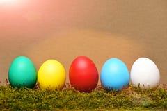 Målade easter färgrika ägg med grön mossa på brun bakgrund Royaltyfri Bild