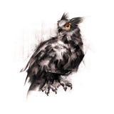 Målade en uggla som sammanträde på en vit bakgrund skissar Royaltyfri Foto