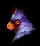 Målade ljusa fåglar på en svart bakgrund Royaltyfri Bild