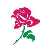 målade Röd-rosa färger steg Royaltyfri Fotografi