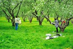 Målare som öva i en May äppleträdgård Fotografering för Bildbyråer
