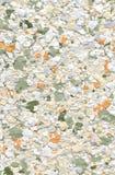 målarfärg för bakgrundsfärgdesign Royaltyfri Bild