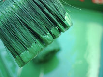 Målarfärgborste i grön färg arkivfoto