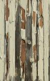 Målarfärgen som skalar av av plankan arkivfoto