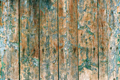 Målarfärgskalning från wood bakgrund Royaltyfri Foto