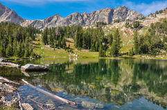 Målarpenselkanjonslinga i den storslagna Tetons nationalparken, Wyoming, royaltyfri bild