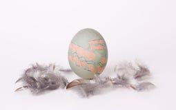 Målat ägg med fjädrar Royaltyfri Bild