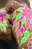 målat elefanthuvud Royaltyfria Foton