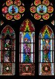Målat glassfönster av den Freiburg domkyrkan Arkivbild