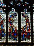 målat glassfönster av den Treguier domkyrkan royaltyfri fotografi