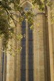 Målat glassfönster av domkyrkan av Arezzo Arkivfoton