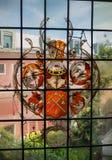 Målat glassfönster i Amsterdam kanalhus Fotografering för Bildbyråer