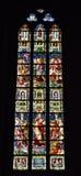 Målat glassfönster i det kyrkliga helgonet Walburga, Royaltyfria Bilder