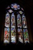 Målat glassfönster i Notren Dame Cathedral Royaltyfri Fotografi