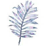 Målat indigoblått blad för vattenfärg som tropisk hand isoleras på vit bakgrund Arkivfoto