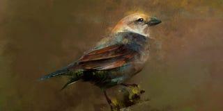 Målat sceniskt fågelsammanträde på en filial royaltyfri illustrationer