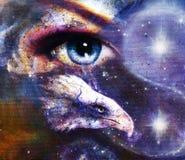 Målningörn med kvinnaögat på abstrakt bakgrund och Yin Yang Symbol i utrymme med stjärnor Vingar som flyger vektor illustrationer