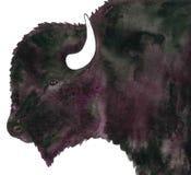 Målning för tjurbuffelvattenfärg Arkivfoto