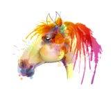 Målning för vattenfärg för hästhuvud vektor illustrationer