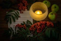 målning Stilleben med anmärkningar, blommor, frukt, rönn på wood bakgrund Det kan vara van vid skapar packar, gåvakort Arkivfoton