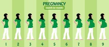 Månad vid månadhavandeskapetapper av den gravida muslimkvinnan med högt arkivfoton