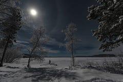 Månbelyst vinterlandskap med skogen och personen som korsar sjön under en blå himmel med den dolda månen för fullt moln royaltyfri bild