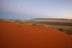 Måne över den röda Kalahari dyn Royaltyfri Bild