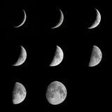 Måne Royaltyfria Bilder