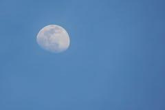 Måne i afton Fotografering för Bildbyråer