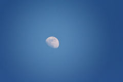 Måne i mörkret - blå himmel Royaltyfria Bilder