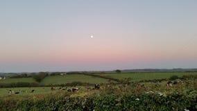 Måne och solnedgång Arkivbild