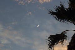 Måne på dramatisk solnedgånghimmel med moln Royaltyfri Bild