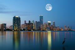 Måne som stiger över Miami, Florida Royaltyfria Bilder