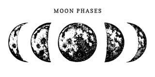 Månefasbild på vit bakgrund Räcka den utdragna vektorillustrationen av cirkuleringen från nytt till fullmånen stock illustrationer