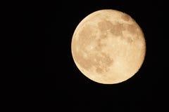 Månen. Royaltyfria Bilder