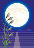 Månevisning Royaltyfri Bild