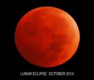 Månförmörkelse Oktober 2014 Royaltyfri Foto