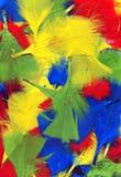 Mång- färgad fjäderbakgrund Arkivfoto