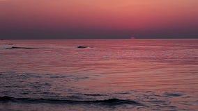 Mång--färgad soluppgång. Timelapse stock video
