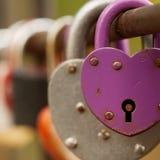 Mång--färgade hänglås hänger på staketet som ett symbol av förälskelse och lojalitet royaltyfria bilder