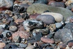 Mång- färgade kiselstenar på en strand fotografering för bildbyråer