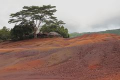 Mång--färgade sandiga dyn Chamarel Mauritius Arkivfoton