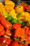 Mång--färgade spanska peppar Arkivbilder