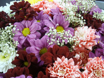 Mång- färgbukett med sådan blomma som dahlia och krysantemum Arkivfoto
