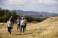 Mång- folkgrupp av fem lyckliga unga vuxna vänner som går på en lantlig bana under en bergvandring arkivfoton