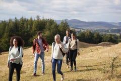 Mång- folkgrupp av fem lyckliga unga vuxna vänner som talar, som de går på en lantlig bana under en bergvandring arkivbilder