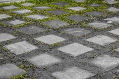 Mång--fyrkant satte rektangulära gångbanatjock skiva tillsammans att växla med gräset royaltyfria foton
