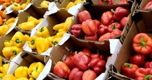 Mång- kulör spansk peppar som förläggas på hyllor på den konventionella marknaden arkivfilmer